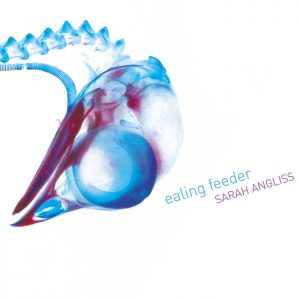 Album: Ealing Feeder (2017)
